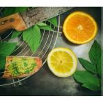 Houmous à l'égopode : tartinade végétale