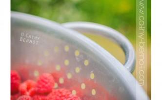 vinaigre aromatisé à la framboise