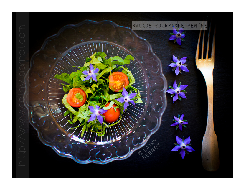 salade-bourrache-menthe