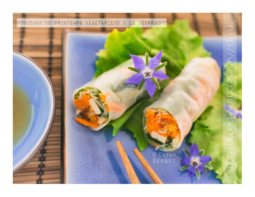 rouleau-de-printemps-vegetarien