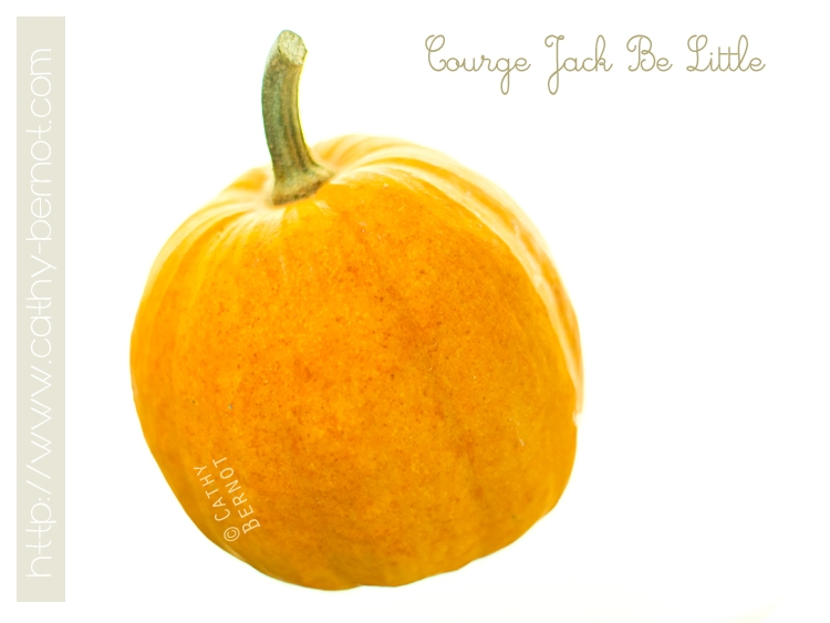 courge-jack-be-little