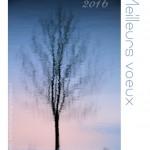 Meilleurs voeux! Bonne année 2016