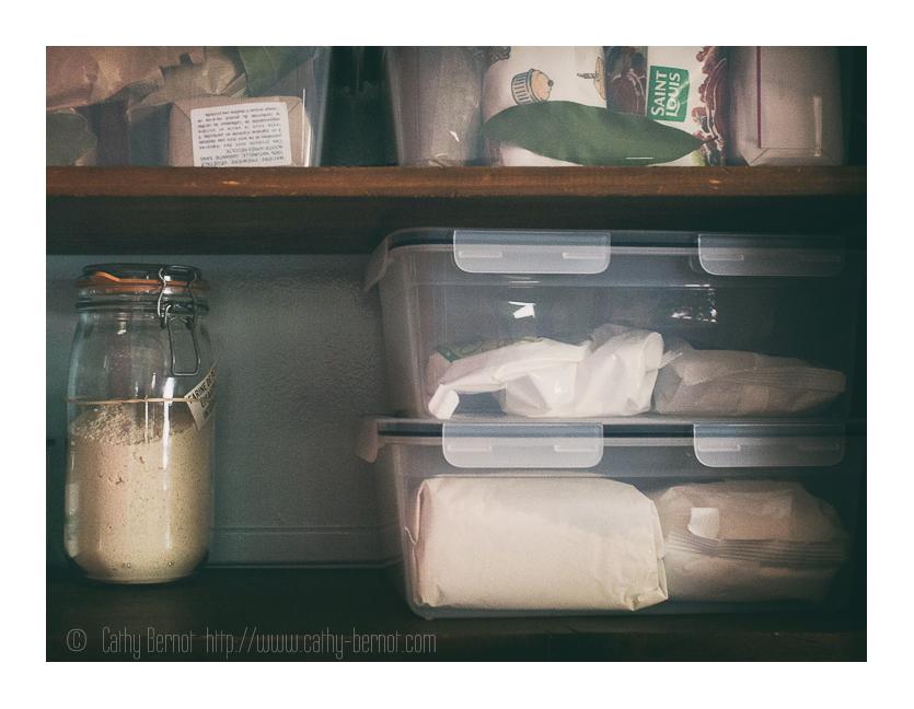 mites-alimentaires-boites-plastiques